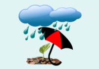 How Monsoon Affect Stock Markets & So Your Earning